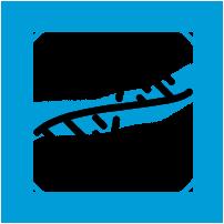 CMV - Genefron